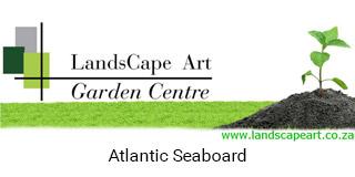 landsacape-art